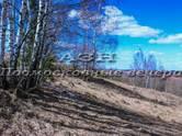 Земля и участки,  Московская область Симферопольское ш., цена 2 800 000 рублей, Фото