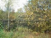 Земля и участки,  Московская область Щелково, цена 1 050 000 рублей, Фото