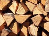 Перевозка грузов и людей Перевозка и погрузка леса, цена 1 р., Фото