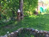 Дома, хозяйства,  Московская область Руза Рузский р-н, цена 1 700 000 рублей, Фото