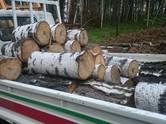 Перевозка грузов и людей Сыпучие грузы, цена 50 р., Фото