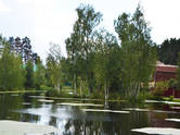 Дачи и огороды,  Московская область Одинцовский район, цена 4 500 000 рублей, Фото