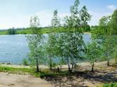 Земля и участки,  Тульскаяобласть Другое, цена 325 000 рублей, Фото