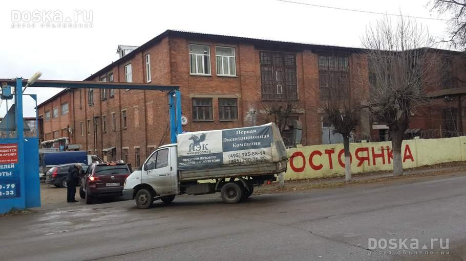 devushki-sosut-chlen-fotografii
