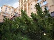 Квартиры,  Санкт-Петербург Владимирская, цена 55 845 000 рублей, Фото