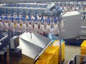 Вакансии (Требуются сотрудники) Упаковщик, Фото