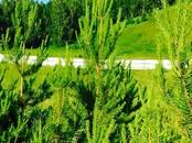 Земля и участки,  Красноярский край Красноярск, цена 250 000 рублей, Фото