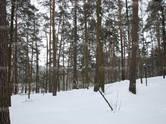 Дома, хозяйства,  Московская область Одинцовский район, цена 2 190 444 рублей/мес., Фото