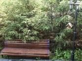 Дома, хозяйства,  Московская область Красногорский район, цена 68 203 080 рублей, Фото
