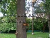 Дома, хозяйства,  Московская область Мытищи, Фото