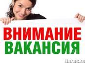 Вакансии (Требуются сотрудники) Агент рекламный, Фото