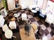 Офисы,  Москва Арбатская, цена 699 000 рублей/мес., Фото