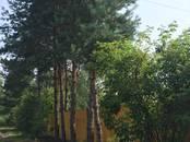 Дома, хозяйства,  Московская область Орехово-зуевский район, цена 1 900 000 рублей, Фото