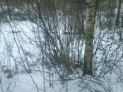 Земля и участки,  Ленинградская область Лужский район, цена 77 000 рублей, Фото
