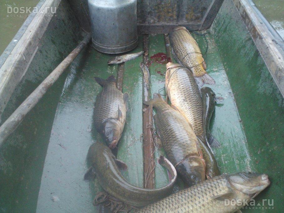 рыбалка в астрахани на бушме