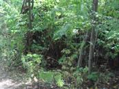 Земля и участки,  Московская область Щелковский район, цена 1 649 000 рублей, Фото