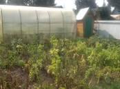 Дачи и огороды,  Новосибирская область Новосибирск, цена 750 000 рублей, Фото