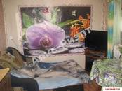 Дома, хозяйства,  Краснодарский край Красноармейская, цена 1 000 000 рублей, Фото