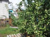 Дома, хозяйства,  Саратовская область Турки, Фото