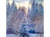 Дома, хозяйства,  Московская область Наро-Фоминский район, цена 8 200 000 рублей, Фото