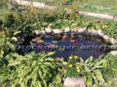 Дачи и огороды,  Московская область Ярославское ш., цена 1 550 000 рублей, Фото