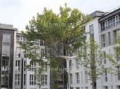 Офисы,  Москва Перово, цена 39 462 500 рублей, Фото