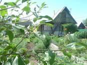 Дачи и огороды,  Еврейская AO Другое, цена 1 000 000 рублей, Фото