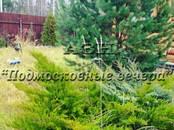 Дачи и огороды,  Московская область Симферопольское ш., цена 2 250 000 рублей, Фото