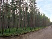 Земля и участки,  Ленинградская область Выборгский район, цена 799 000 рублей, Фото
