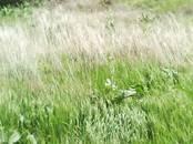 Земля и участки,  Краснодарский край Другое, цена 400 000 рублей, Фото