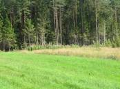 Дома, хозяйства,  Ленинградская область Выборгский район, цена 190 000 рублей, Фото