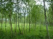 Земля и участки,  Тульскаяобласть Другое, цена 750 000 рублей, Фото