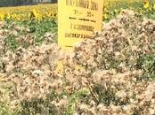 Земля и участки,  Краснодарский край Краснодар, цена 65 000 000 рублей, Фото