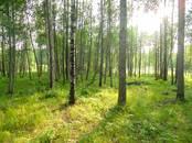 Земля и участки,  Ленинградская область Выборгский район, цена 400 000 рублей, Фото