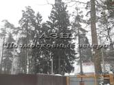 Дома, хозяйства,  Московская область Киевское ш., цена 11 000 000 рублей, Фото