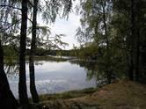 Земля и участки,  Ярославская область Другое, цена 4 820 000 рублей, Фото