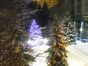 Квартиры,  Белгородскаяобласть Белгород, цена 3 750 000 рублей, Фото