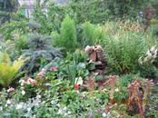 Дачи и огороды,  Челябинская область Касли, цена 600 рублей, Фото