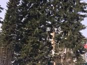 Дома, хозяйства,  Кемеровскаяобласть Мыски, цена 3 500 000 рублей, Фото