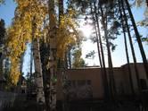 Дома, хозяйства,  Новосибирская область Другое, цена 20 000 000 рублей, Фото