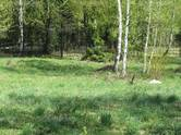Дома, хозяйства,  Московская область Наро-Фоминский район, цена 82 496 318 рублей, Фото