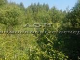 Дачи и огороды,  Московская область Ленинградское ш., цена 1 300 000 рублей, Фото