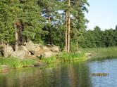 Земля и участки,  Ленинградская область Приозерский район, Фото