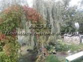 Дачи и огороды,  Московская область Дрезна, цена 1 700 000 рублей, Фото