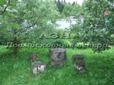Дачи и огороды,  Московская область Волоколамское ш., цена 4 200 000 рублей, Фото