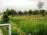 Земля и участки,  Московская область Истра, цена 205 946 000 рублей, Фото