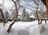 Дома, хозяйства,  Московская область Минское ш., цена 25 100 000 рублей, Фото
