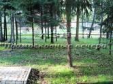 Дачи и огороды,  Московская область Киевское ш., цена 18 500 000 рублей, Фото
