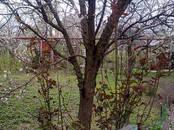 Земля и участки,  Краснодарский край Краснодар, цена 2 500 000 рублей, Фото