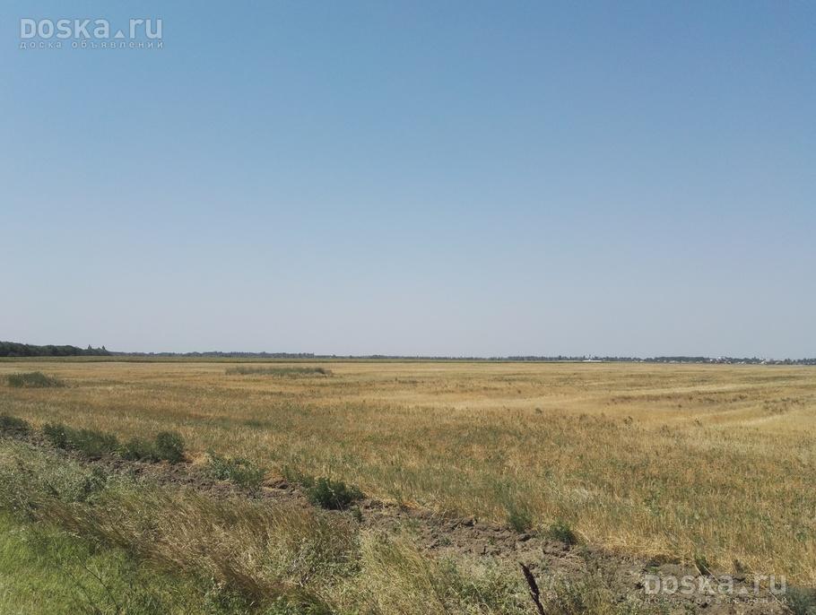 ношу продажа сх земли крым 100 рублей